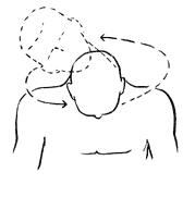 круговые упражнения для шеи