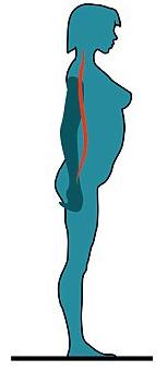 плоская спина