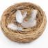 Синдром опустевшего гнезда